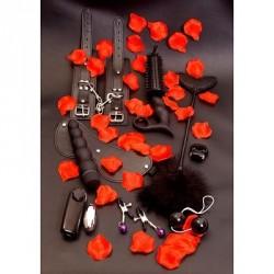 Love toy kit de juguetes principiantes